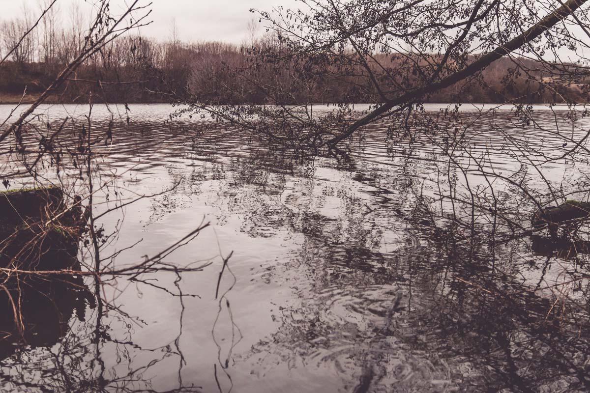 twelvefeet stories 2021 sebastianmanecke 16 -  - Karpfenanglen im kalten Wasser, KArpfenangeln im Winter, kaltes Wasser, kalte Jahreszeit