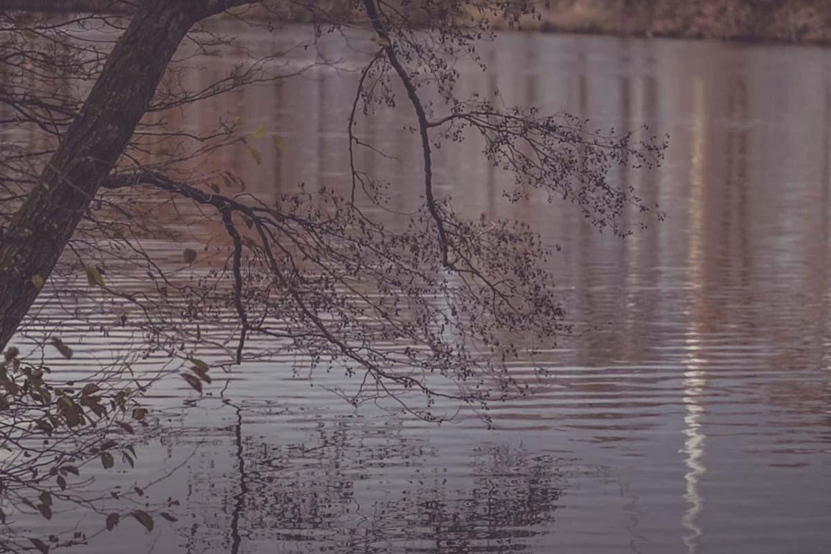 twelvefeet stories 2021 sebastianmanecke 22 -  - Karpfenanglen im kalten Wasser, KArpfenangeln im Winter, kaltes Wasser, kalte Jahreszeit