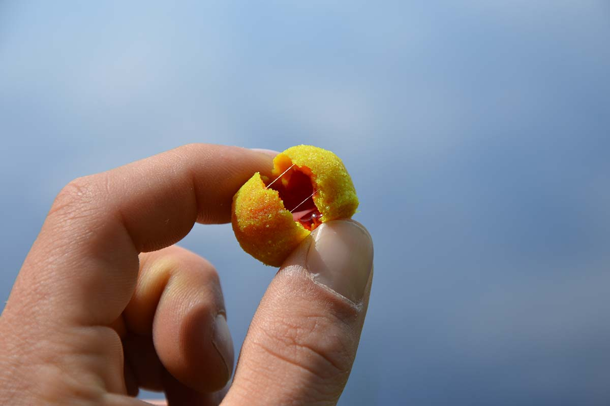 twelvefeet nutrigo extra lk baits 7 -  - Nutrigo Extra, Nutrigo, LK-Baits