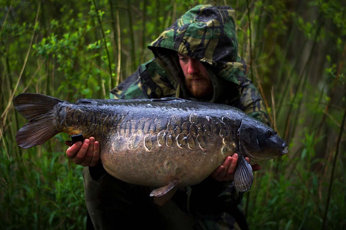 twelvefeetmag liam woolcott karpfenangeln in england 2 -  - Wolf International, Liam Woolcott, Karpfenangeln in England, Ausnahme-Fisch