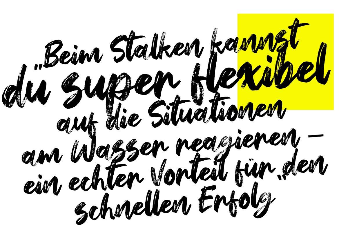 twelvefeet stories lukaswelschenbach stalkingtutorial 19 -  - Stalking auf Karpfen, Stalking, stalken