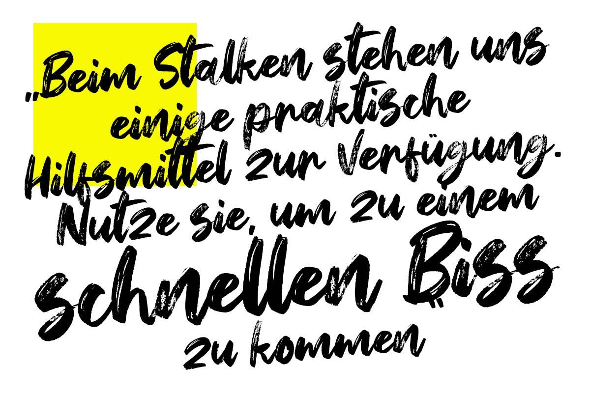 twelvefeet stories lukaswelschenbach stalkingtutorial 20 -  - Stalking auf Karpfen, Stalking, stalken