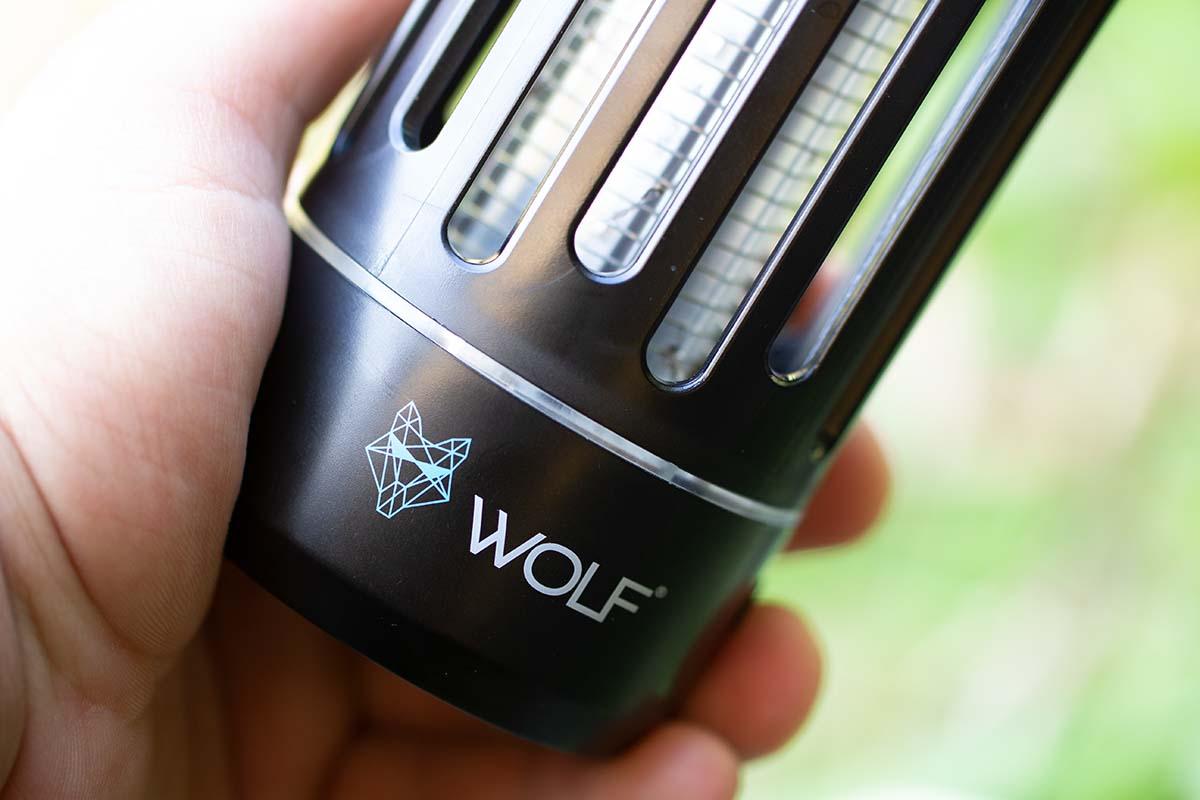 twelvefeetmag wolf mozzi zappa 4 -  - Wolf Mozzi Zappa, Wolf International, Wolf Int, Mozzi Zappa