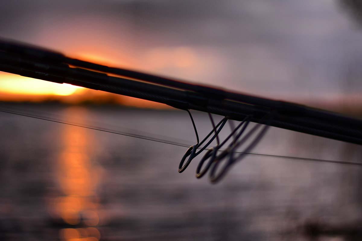 twelvefeetmag karpfenangeln am fluss tackle 2 -  - Karpfenangeln am Fluss, Flussangeln auf Karpfen, Flussangeln, Christopher Schneider