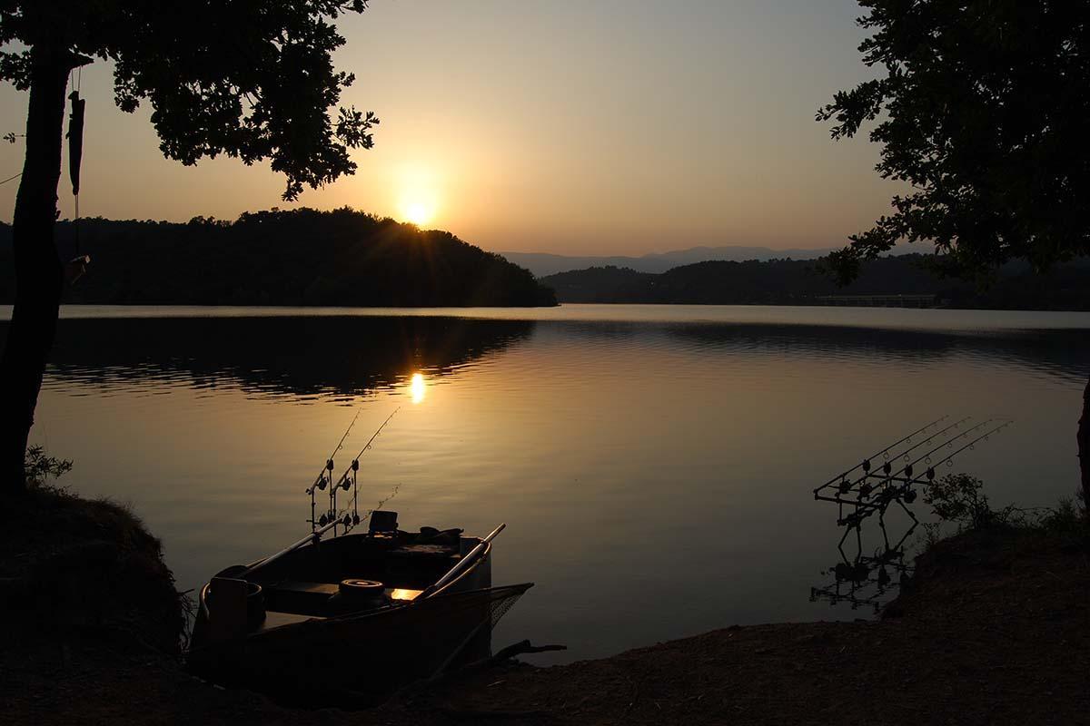 twelvefeetmag 30 kilo fisch cassien 4 -  - Lac de Saint Cassien, Cassien, 30 Kilo Karpfen